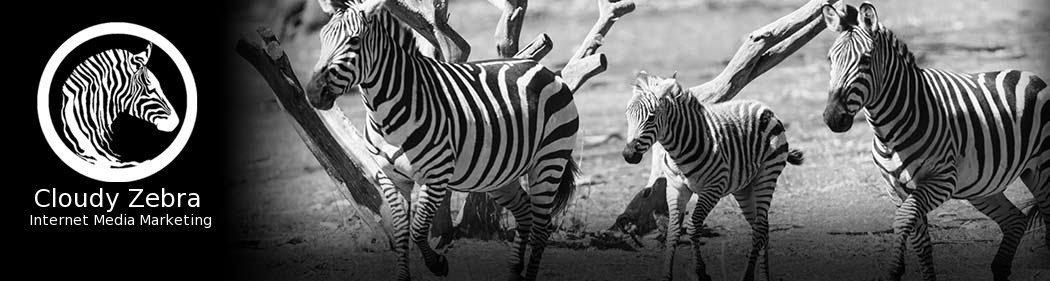 Albany SEO Agency- Cloudy Zebra 518-288-8736
